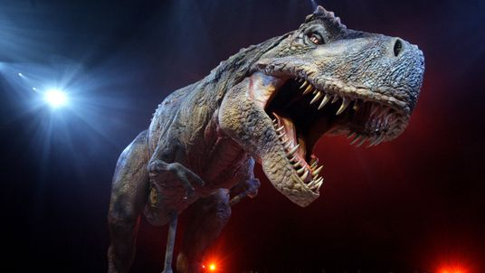 An adult Tyrannosaurs Rex robotic dinosaur performs in the O2 arena ahead of the forthcoming European leg of the live show 'Walking With Dinosaurs' on March 18, 2009 in London, England. The live arena show, which has already toured throughout North America, tours the UK from July 2009. The £10 million show features 15 mechanical life-sized dinosaurs and is based upon the hit BBC TV series of the same name