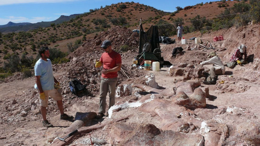 The dig site at Patagonian quarry where the fossilised bones of six young adult dinosaurs were found.
