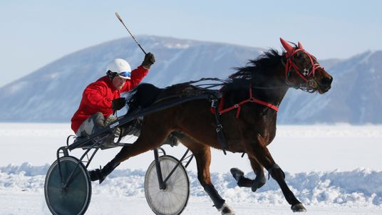 A trotter competes in a harness race on the frozen Yenisei River south of the Siberian city of Krasnoyarsk, Russia