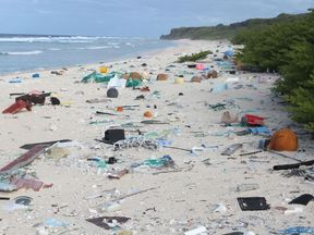 One of the beaches on Henderson Island is littered with plastic