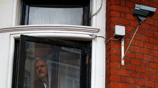 Julian Assange looks outside the window of the Ecuadorian embassy