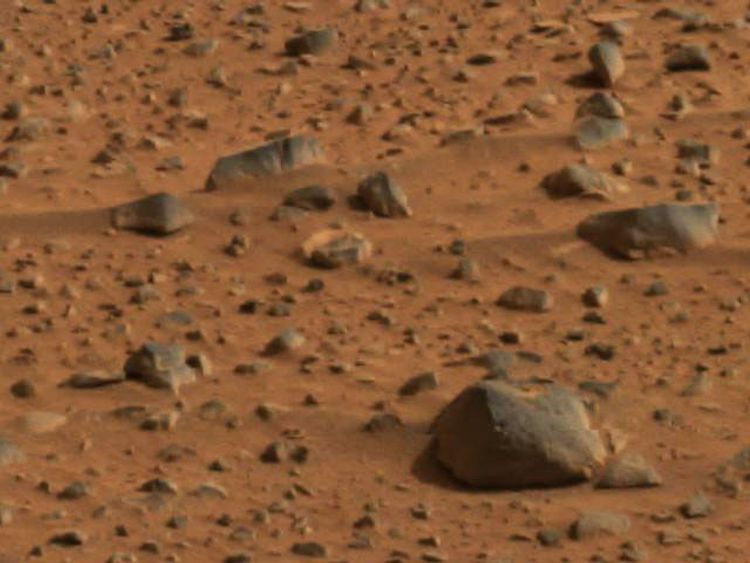 """The outgoing planetary protection officer described Mars in 2015 as """"pretty clean"""""""