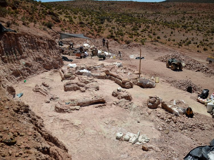 The dig site at Patagonian quarry where the fossilised bones of six young adult dinosaurs were found