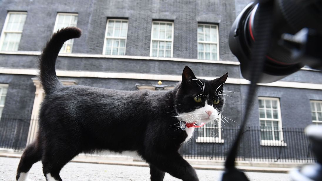 Palmerston in Downing St