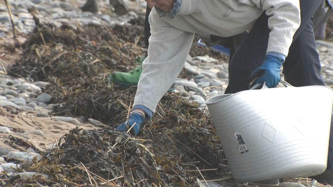 Wales could follow Scotland with measures to cut plastic waste