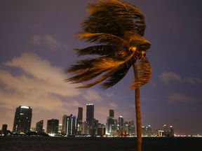 The storm decreased in strength as it approached Tampa on Monday