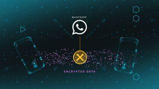 Graphic WhatsApp encryption screen.