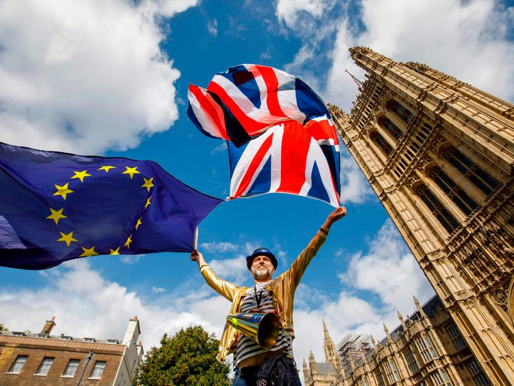 Pro-EU demonstrators made their feelings known ahead of the Commons vote