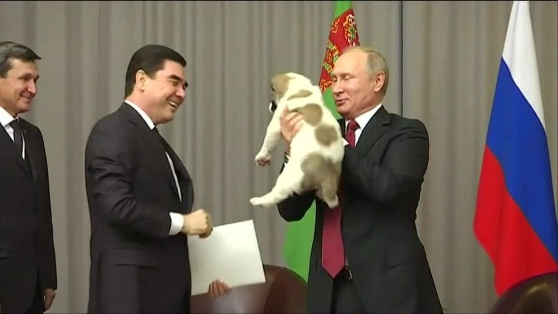 Vladimir Putin is given a puppy for his birthday