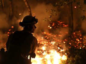 CalFire firefighter Trevor Smith monitors a firing operation while battling the Tubbs Fire on October 12, 2017 near Calistoga, California