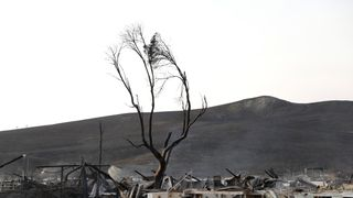 Burnt structures at the historic Stornetta Dairy along Highway 121 during the Nuns Fire in Sonoma, California