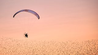 In the marshes of south-west Denmark, paraglider Horacio Llorens realises his dream of flying with thousands of migrating starlings