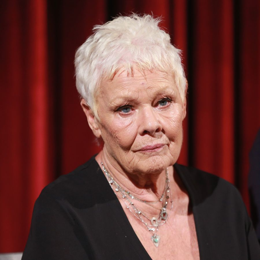 NEW YORK, NY - SEPTEMBER 14: Actor Dame Judi Dench attends an Official Academy Screening of VICTORIA & ABDUL hosted by The Academy of Motion Picture Arts & Sciences at MOMA - Celeste Bartos Theater on September 14, 2017 in New York City. (Photo by Robin Marchant/Getty Images for The Academy of Motion Picture Arts & Sciences ) Editorial subscription SML 3989 x 3339 px | 33.77 x 28.27 cm @ 300 dpi | 13.3 MP Size Guide Add notes DOWNLOAD AGAIN Details Restrictions:Contact your local office for all