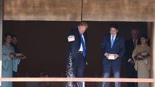 Trump dumps Koi carp food