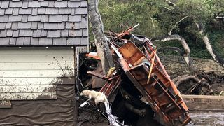 A search dog looks for victims in damaged homes after a mudslide in Montecito, California