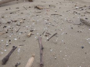 The spill from October can be seen on Durban's coastline
