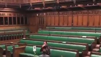 Man proposes to woman in house of commons