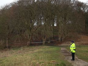 A police officer at the scene where Pearl was found