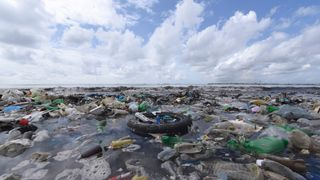 Plastic debris in the sea is a huge environmental problem