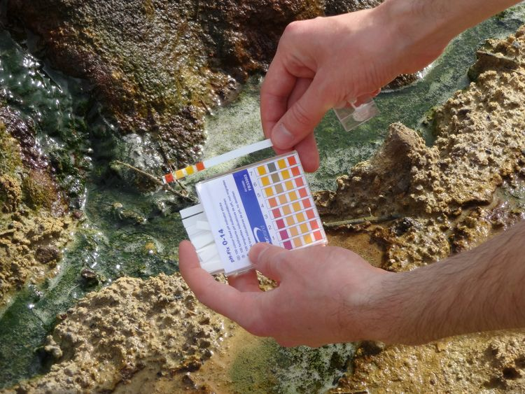 The ICL team tests the Ph of the streams in Dorset