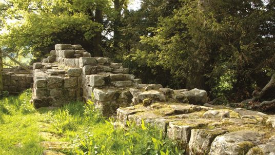 Historic England said 'nighthawks' have damaged the ruins of the Brunton Turret section of Hadrian's Wall