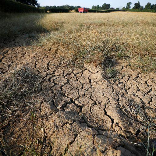heatwave quadruples subsidence insurance claims