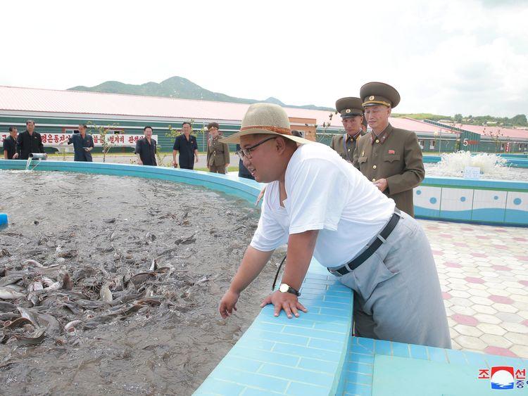 Kim Jong Un visits a catfish plant