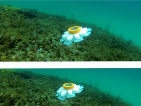 """Photo issued by Dr Erik Engeberg of a robot jellyfish. According to scientists, the creation could act as a """"guardian of the oceans"""""""