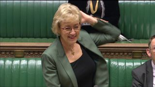 Commons Leader shows flouncing skills
