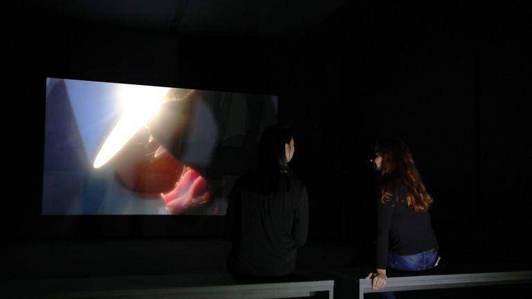 Artist Charlotte Prodger presents BRIDGIT at Tate Britain